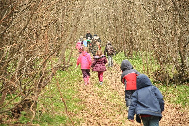 Children visiting Great Dixters coppiced wood in early spring
