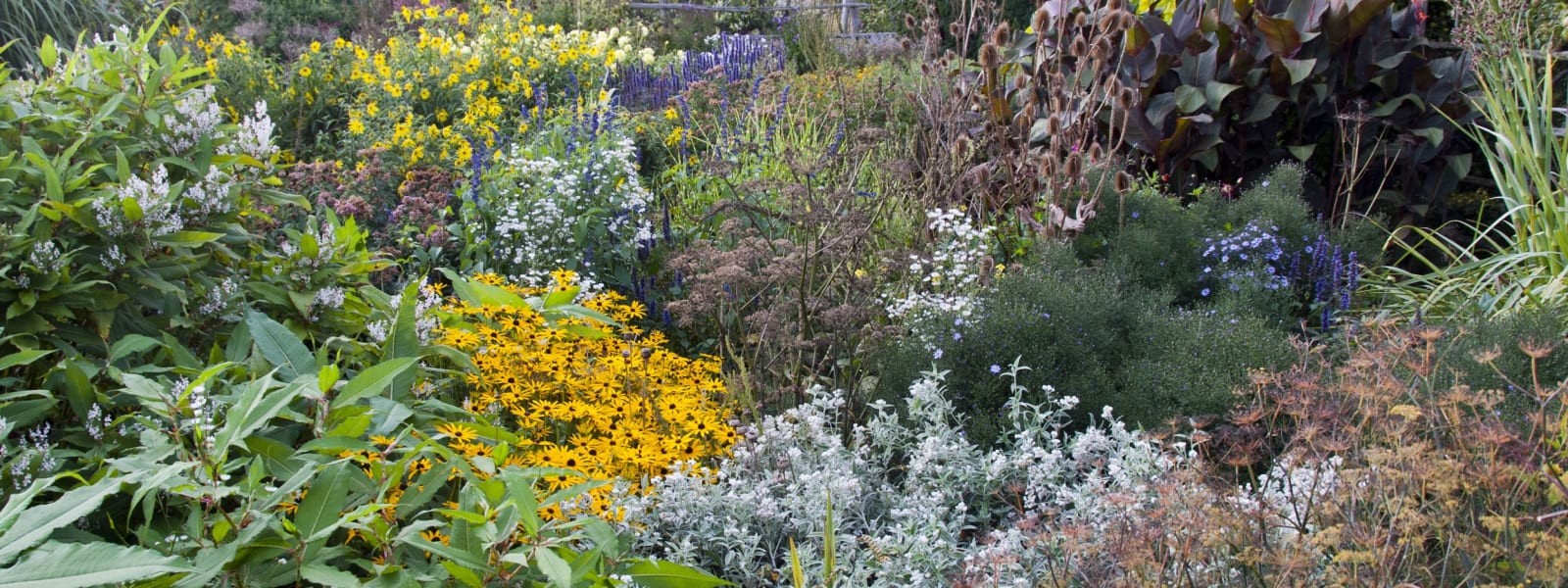 Behind the Scenes at Great Dixter- September