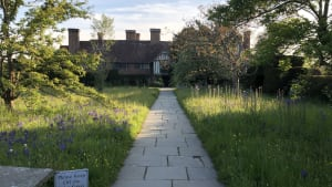 Dixter Tricks
