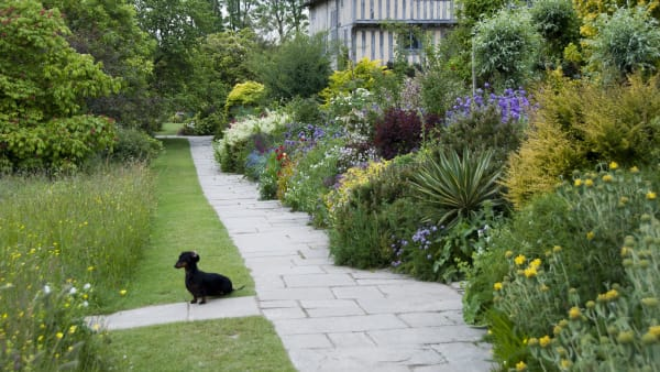 Behind the Scenes at Great Dixter- June