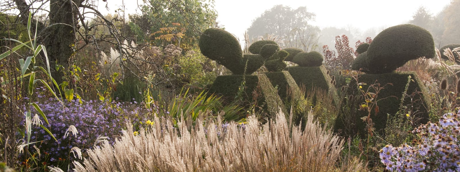 Behind the Scenes at Great Dixter- October