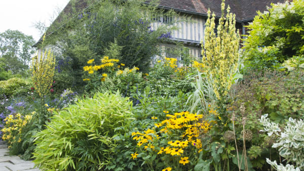 Behind the Scenes at Great Dixter- August